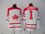 wholesale sell canada team nhl jersey from mickey82118@yahoo.com